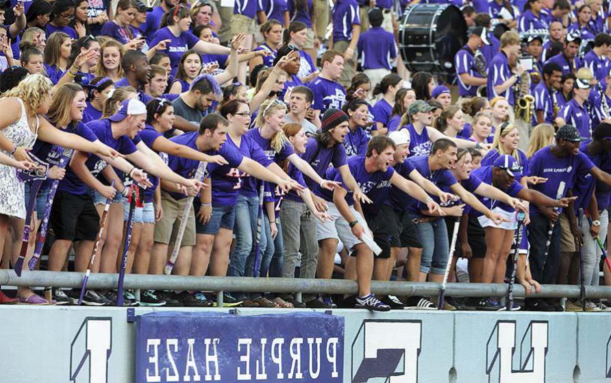 SFA traditions: Purple Haze